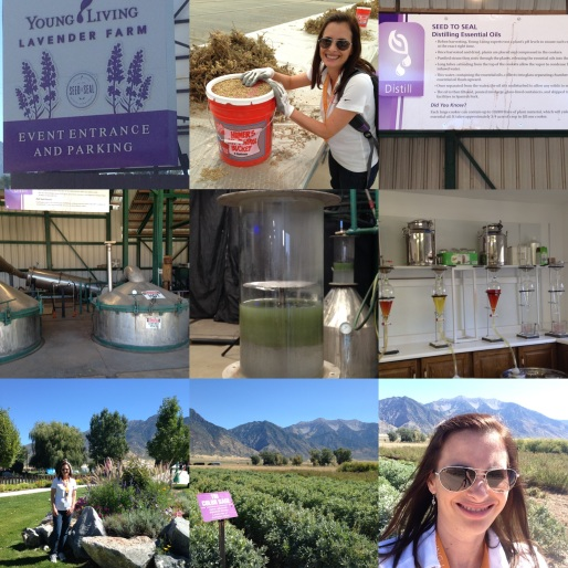 Mona Utah Farm Collage