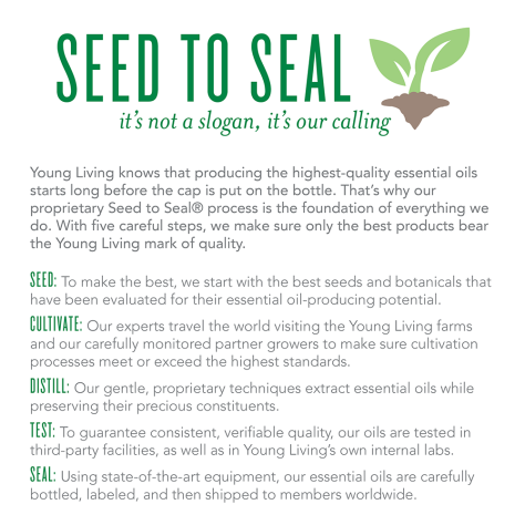seed-to-seal-infographic