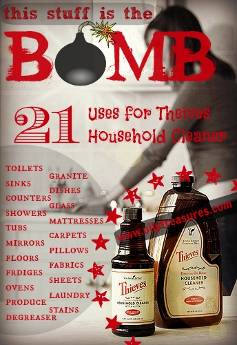 the bomb thieves household cleaner2