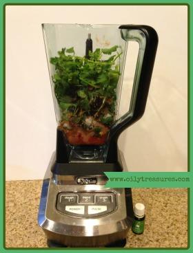 salsa blender