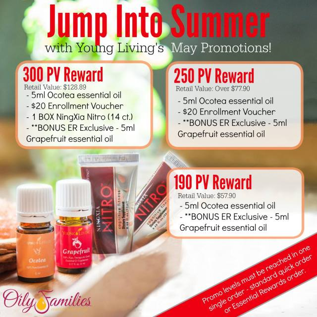 May YL Promotion